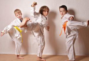 Karate kid party theme