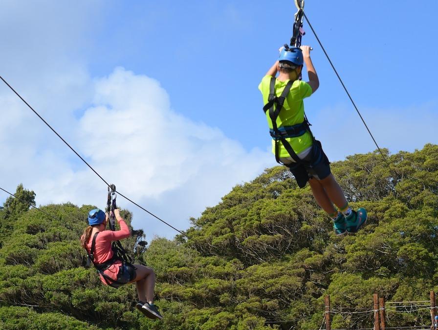 team bonding ziplining activity